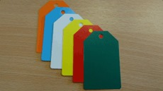 Blank Coloured Plastic Tags