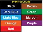 Assetmark tamper evident serial number label (text on colour), 38mm x 76mm