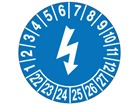 Electrical check month and year label