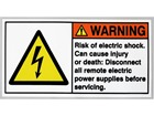 Risk of electric shock label