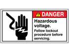 Danger. Hazardous voltage label