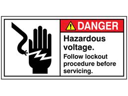 Danger. Hazardous voltage label
